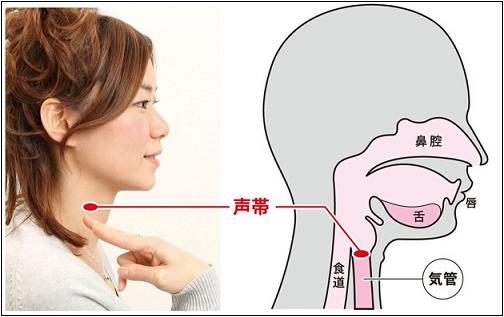 【重要案件】 声帯嚢胞 (せいたいのうほう)
